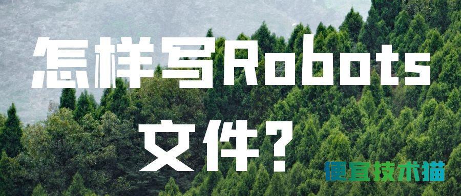 怎样写Robots文件?